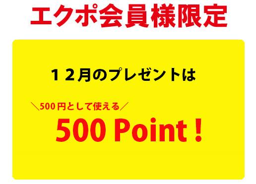 【毎月エクポでラッキー♪】<12月>500ポイントプレゼント!