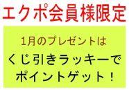 【エクポ会員様】キャンペーン特典は何度でもOK!