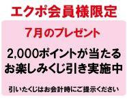 【毎月エクポでラッキー♪】<7月>最大2000ptが当たる!くじ引きチャンス!