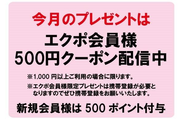 【毎月エクポでラッキー♪】<4月>500円クーポンプレゼント!